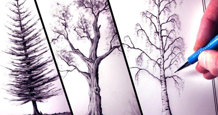איך לצייר עצים